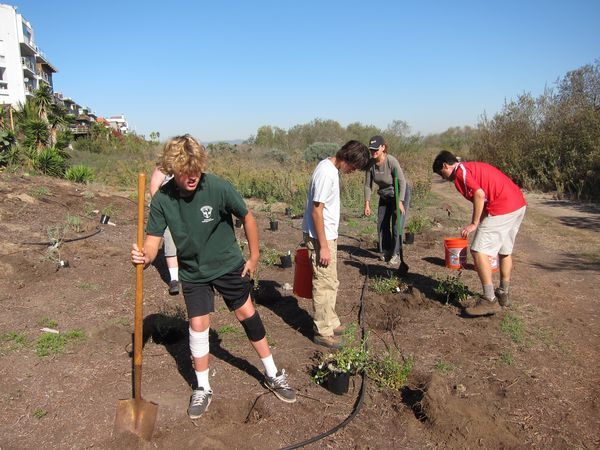 Planting action