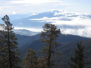 Highlight for Album: Mt San Gorgonio - November 2008
