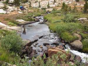 A Pioneer meadow