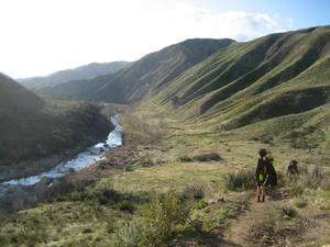 Highlight for Album: Sespe River March 2009