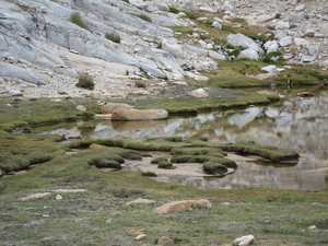 Lake fringe
