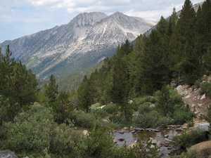 Trail to Bear Paw Mountain