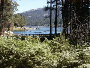 Beautiful setting on Shaver Lake